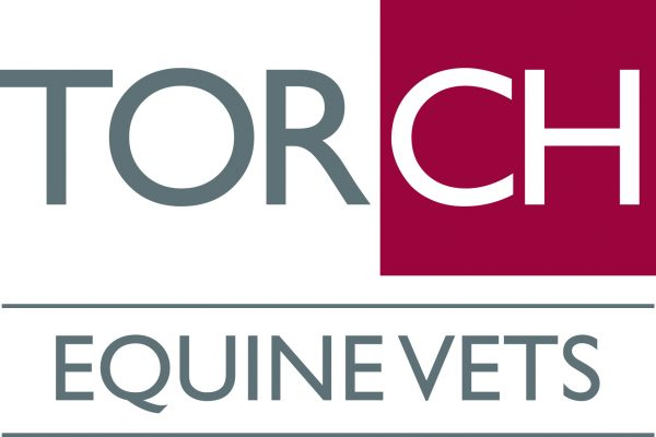 TORCH FARM AND EQUINE VETS Logo