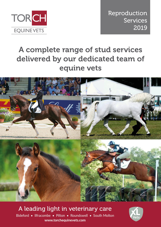 Torch Equine Vets - Equine Stud Services leaflet